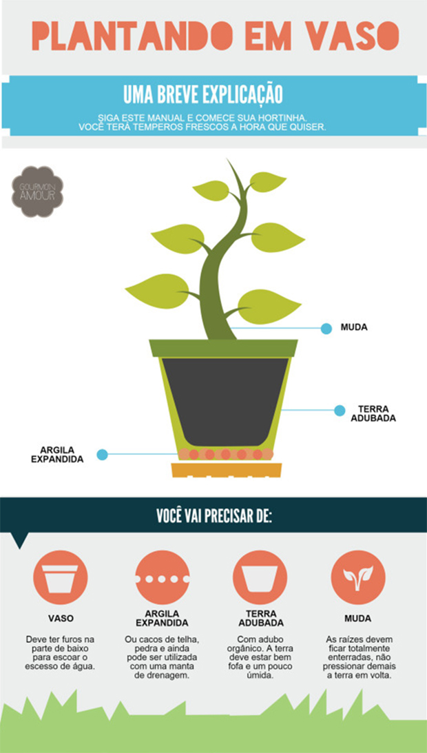 follow-the-colours-plantando-em-vaso-infografico
